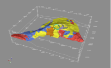 3D visualisation model of the geology of Tenerife (made with 3D Geomodeller).